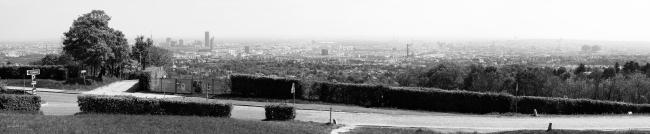 Wien vom Cobenzel aus gesehen